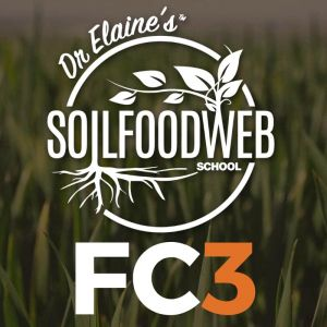 Soil Foodweb Foundation Course 3