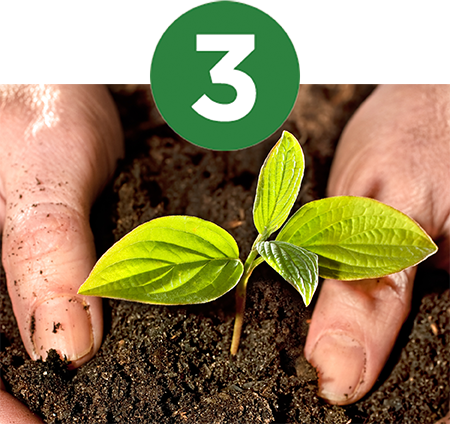 Maintain Soil Health