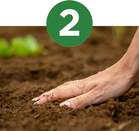 Boost Soil Health