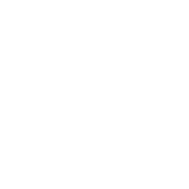 Soil Food Web School